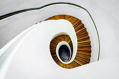Come On Tell Me The Answer (Sean Batten) Tags: city england urban london stairs spiral nikon artgallery unitedkingdom steps gb vauxhall d800 damienhirst 1424 newportstreetgallery