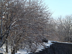 Harsimus Branch Embankment, Snow View, Jersey City, New Jersey (lensepix) Tags: snow newjersey jerseycity harsimusbranchembankment harsimusembankment