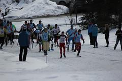 skitrilogie2016_013 (scmittersill) Tags: ski sport alpin mittersill langlauf abfahrt skitouren kitzbhel passthurn skitrilogie