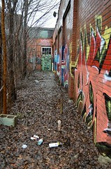 walk the row (tsodan03) Tags: streetart abandoned graffiti louisville abandonedplaces louisvillegraff