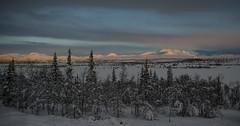 Morning light (Oddbjrn Strand) Tags: trees winter lake snow mountains color colour nature norway clouds landscape norge vinter utsikt skyer fjell sn landskap naturbilder solskinn innsj farger valdres nikcolorefex naturbilde granskog kulturlandskap yddin photoshopcc yddestlen