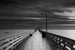 Ballast Point Pier (josesuro) Tags: longexposure bw digital landscapes tampabay florida piers fineart 2016 ballastpoint leebigstopper afsnikkor50mmf18g jaspcphotography nikond750