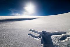 Human print (Laurent VALENCIA) Tags: snow france alps building sports montagne alpes canon buildings print woods ciel human surfers neige foule savoie laplagne matin pistes skieurs frenchalps immeubles sapins glisse 50mpx 5dsr