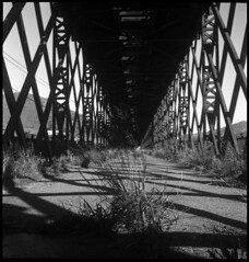 (Un-exposed) Tags: rolleiflex apx100 agfa
