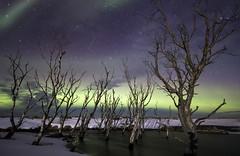 norðurljós #2 | Iceland (Julien Ratel ( Júllí Jónsson )) Tags: winter canon landscape iceland aurora paysage wandering northernlights auroraborealis islande icelandic landslag solarstorm magneticstorm efs1022 neverstopexploring auroresboréales islenska kp6 blueju38 julienratel lýðveldiðísland julienratelphotography landslagsmynd blueju islenski inspiredbyiceland earthpix eos7dmarkii welivetoexplore jullijonsson icelandexploring