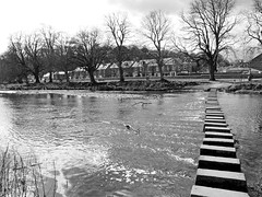 Morpeth Stepping Stones (stephen.lewins (1,000 000 UP !)) Tags: bw monochrome steppingstones morpeth abbeyterrace northumberand highstanners morpethinbw