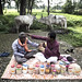 Harnessing biodiversity wealth: Traditional medicinal healers protect forest wealth; Chhattisgarh, 2015