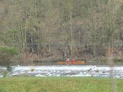 Ruderer auf der Ruhr (Wuppataler) Tags: ruhr fahrrad frhling radweg ruderer