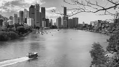 Welcome to Brisbane! (ZeroOne) Tags: city blackandwhite bw water river boat spring cityscape brisbane cbd brisbaneriver kangaroopoint epl3