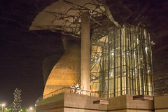 Reflection of Guggenheim Bilbao (koalie) Tags: reflection water spain nightshot upsidedown bilbao es euskadi guggenheimmuseum 201505bilbao