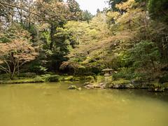 P1590708 (Rambalac) Tags: asia japan lumixgh4 pond water азия япония вода пруд