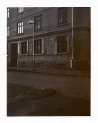 (k.e.k.) Tags: film sepia analog polaroid instant 100 expired expiredfilm landcamera peelapart polaroid180 polaroidsepia100