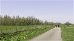 Fietspad (J. Borgmanpad) langs de Oude Maas in de lente (Photographer Simon) Tags: nederland zuidholland zwijndrecht