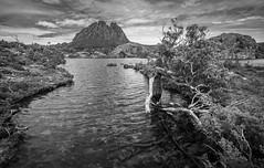Cradle Mountain 1629 (russell.bray) Tags: mountain lake reflections dove australia tasmania cradle