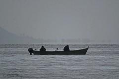 Pcheurs sous la pluie. (sergecos) Tags: water rain grey gris boat fishing pond eau sad sony pluie fisher bateau tristesse barque tang pche trite pcheurs grisatre