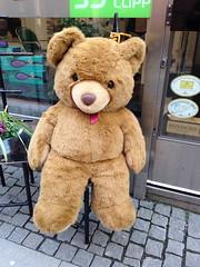 Teddy Bear (rotabaga) Tags: göteborg sweden gothenburg sverige iphone
