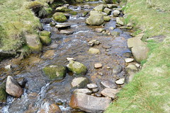 DSC_0188 (Geogrob) Tags: fieldwork edale grindsbrook goldenclough riverstudy rivernoe