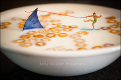 X-treme breakfast (Pikebubbles) Tags: macro breakfast canon toys miniatures shark miniature milk creative tiny littlepeople dslr itsasmallworld smallworld waterskier playingwithyourfood toyart thelittlepeople stopplayingwithyourfood davidgilliver davidgilliverphotography
