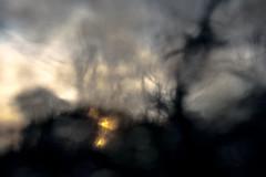 Un/settlement (Dgreen94) Tags: sunset blur barn dark scary twilight woods dusk farm mysterious pictorialism
