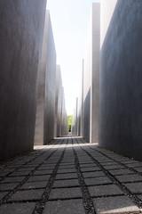 117 365+1 2016 Memorial to the Murdered Jews of Europe, Berlin, Germany (Kris McNeil) Tags: berlin june germany memorial europe 365 jews murdered memorialtothemurderedjewsofeurope 2015 366 3651