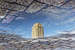 Reflection of New Orleans (R. Engelsman) Tags: reflection building architecture rotterdam neworleans skycraper wilhelminapier