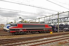20160430 CT 1619 + auto's, Roosendaal (Bert Hollander) Tags: ct 1600 loc rood serie trein rsd roosendaal locomotief 1619 eloc gefco autowagens captrain 46268bhesn
