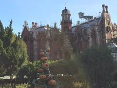 Tokyo Disneyland (jericl cat) Tags: park christmas japan japanese tokyo disneyland pumpkins overlay disney haunted theme mansion nightmarebeforechristmas fantasyland 2015