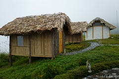 Spa (Vinchel) Tags: leica travel roof building nature architecture outdoor north vietnam cai q lao province sapa