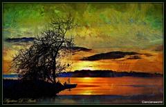 "Prima la fotografia... poi la ""pittura"" - gennaio-2016 (agostinodascoli) Tags: sunset art texture nature alberi photoshop landscape nikon digitalart digitalpainting nikkor paesaggi sicilia photopainting cianciana"