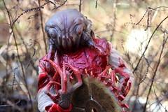 Headcrab Saw Blade (Tyrannodactyl) Tags: 2 saw blood zombie alien blade halflife claws parasite headcrab