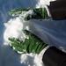 Mão na massa, ou melhor, na neve