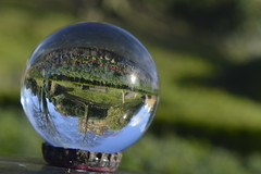 Guildford castle through the Crystal Ball (liritkiraly) Tags: winter nikon guildford inverted beginner crystalball unedited guildfordcastle amature castlegrounds sooc