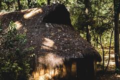 Ruca mapuche (cmenesese) Tags: chile travel lake nature landscape volcano ray scene villarrica lican
