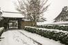Inside Daitoku-ji on a Winter Day (Patrick Vierthaler) Tags: schnee winter snow japan temple japanese kyoto zen 京都 寺院 kansai 雪 冬 禅 tempel 冬景色 japanischer daitokuji 大徳寺 都 みやこ 雪化粧