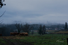 08 janvier 2016 (plovemax) Tags: blue weather fog landscape country hour paysage campagne brouillard heure bleue mto huriel