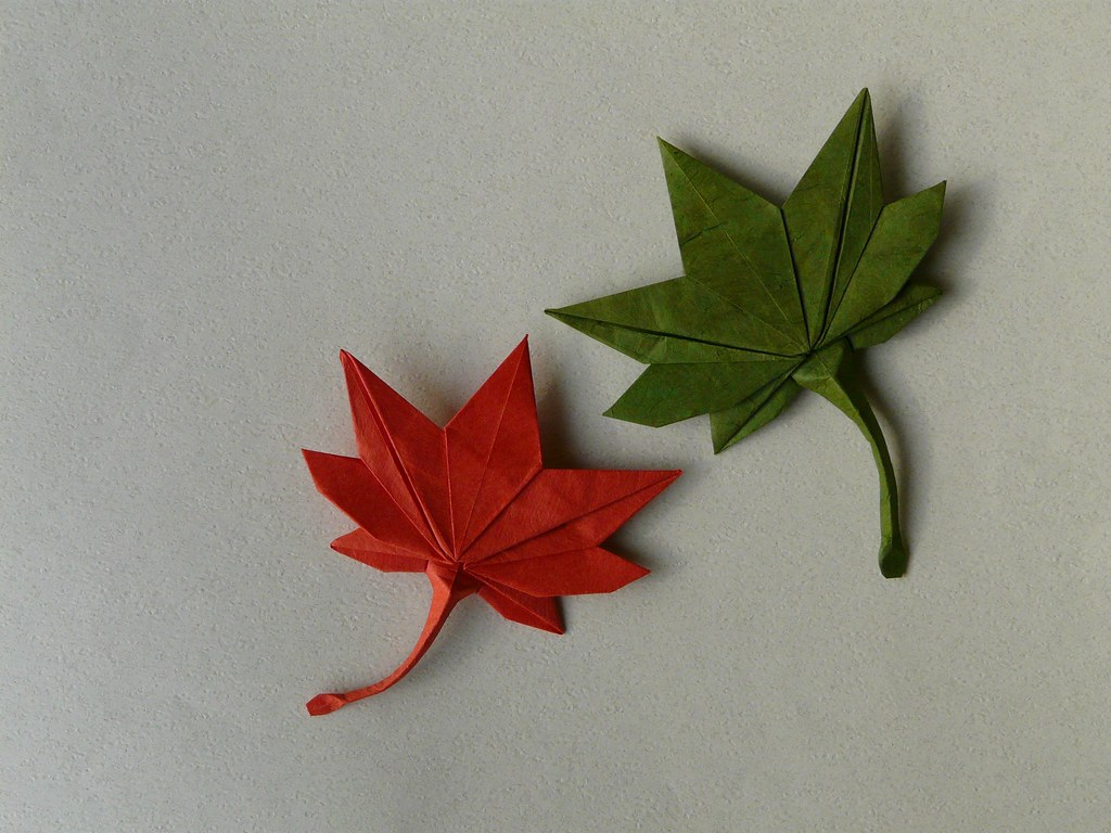 The World's Best Photos of leaf and origami - Flickr Hive Mind - photo#50