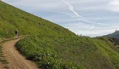 Tony gets ahead (LeftCoastKenny) Tags: trees grass clouds fence hills hiker sierravistaopenspacepreserve boccardolooptrail