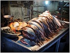 Kohima - Fishes (sharko333) Tags: voyage travel food fish asia asien market olympus asie indien reise kohima nagaland em1