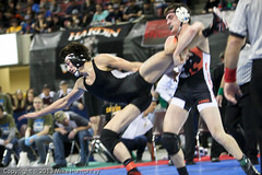 IMG_9236.jpg (mikehumphrey2006) Tags: sports coach team montana pin state action wrestling champion ronan metra billings polson state02121316wrestlingbillingsnoahvarsitypolson