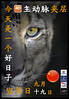 Aortic Awareness China (T Söderlund) Tags: aorticdissectionawarenessday china aorticawareness aorticdissection poster awarenessday aorticdissectionday september19 aortaday snow leopard panther unica snowleopard pantherunica aorta