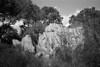Granite rocks n. 13 (Franco & Lia) Tags: sardegna blackandwhite analog nikon rocks sardinia noiretblanc granite epson rocce biancoenero argentique pellicola granito gallura corkoak analogico v500 calangianus nikonl35af2 chêneliège querciadasughero