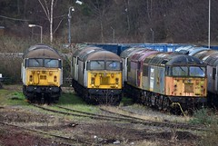 56 graveyard? (Patrick Cheshire) Tags: leicester railways class56