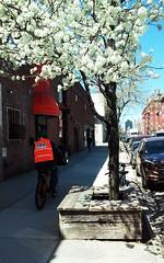 Greenpoint, Brooklyn, NY (lotos_leo) Tags: street urban ny newyork brooklyn spring outdoor greenpoint
