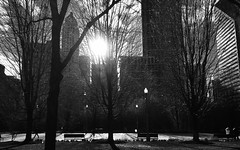Chicago, 2016 (gregorywass) Tags: park city trees bw chicago buildings 2006 millennium april