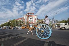 Ezhilagam - Chennai (Sathish_Photography) Tags: blue shadows madras bluesky marinabeach chennai tamilnadu horsecart cloudysky sunrisetime governmentoffice chepauk ezhilagam landmarkofchennai sathishphotography mychennai chennaigovtbuilding oppositemadrasuniversity