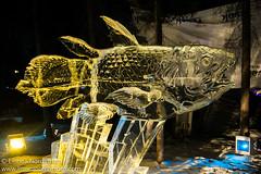 Ice Art - Ugly Fish