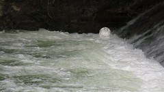 Circling (Kajinsky) Tags: water river video spain dancing balls h2o durango basquecountry wander footballs circling errante