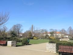 Im Volkspark Mariendorf, Berlin, NGIDn553314519 (naturgucker.de) Tags: naturguckerde cwolfgangkatz 915119198 92636685 865714930 ngidn553314519