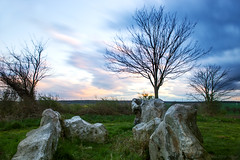 And together we'll stare into silence (OR_U) Tags: longexposure trees sunset history clouds germany rocks prince le oru stoneage megalith hss 2016 megalithictomb helmstedt lbbensteine ifiwasyourgirlfriend sliderssunday stammtischblende50