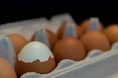 One of these things is not like the other HMM (marielledevalk) Tags: egg eggs hmm oneofthesethingsisnotliketheother oneofthesethings macromondays